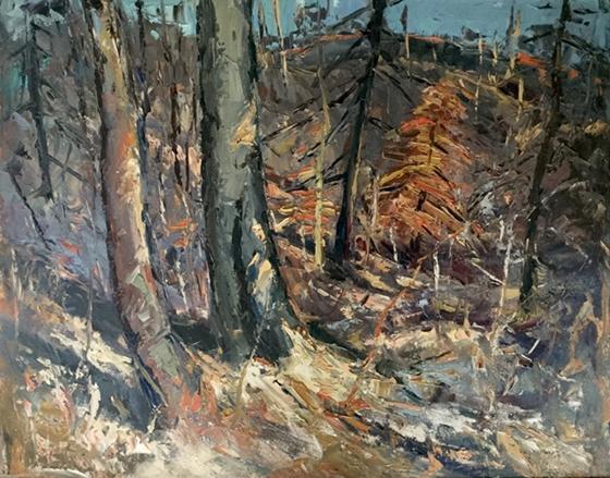 Untitled Woodland Interior